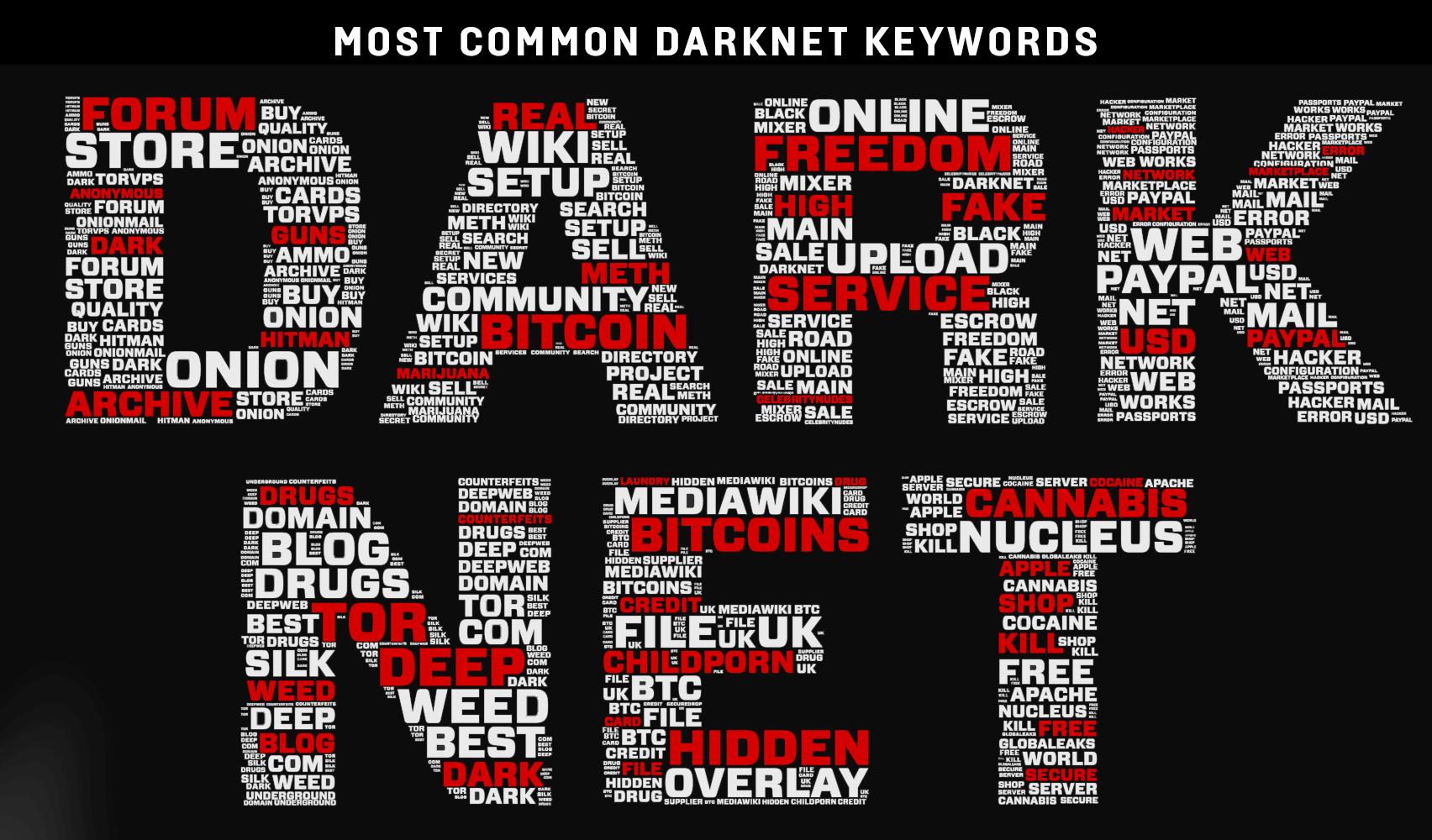 darknet hakkında bilgi