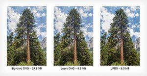 Google'dan JPEG'lerin boyutunu küçülten yeni algoritma