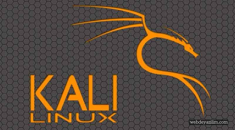 Kali Linux | Exploitation Tools (İstismar Araçları) - Webde
