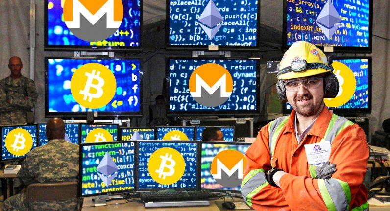 wordpress kripto para madenciliği