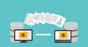 WordPress Site taşıma eklentisi